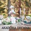 Akademia Drewna